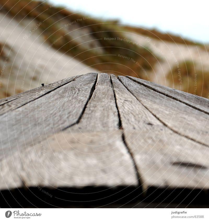 Nature Old Green Beach Ocean Colour Wood Sand Coast Line Lake Watercraft Brown Point Beach dune Baltic Sea