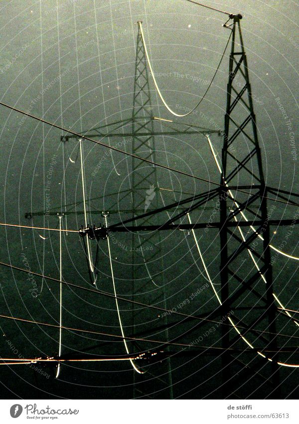 Nature Forest Life Dark Energy industry Electricity Future Cable Electricity pylon Dull Look after