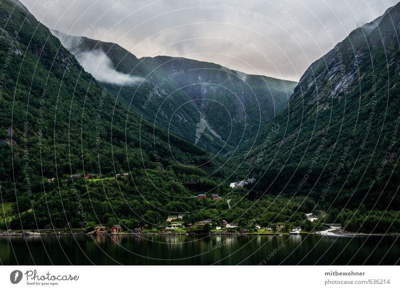river deep, mountain high Vacation & Travel Tourism Far-off places Cruise Mountain Nature Landscape Cloudless sky Weather Fog Coast Fjord Village Deserted Moody