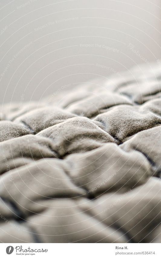 Warmth Living or residing Warm-heartedness Soft Cloth Cozy Checkered Blanket Cuddly Beige Velvety