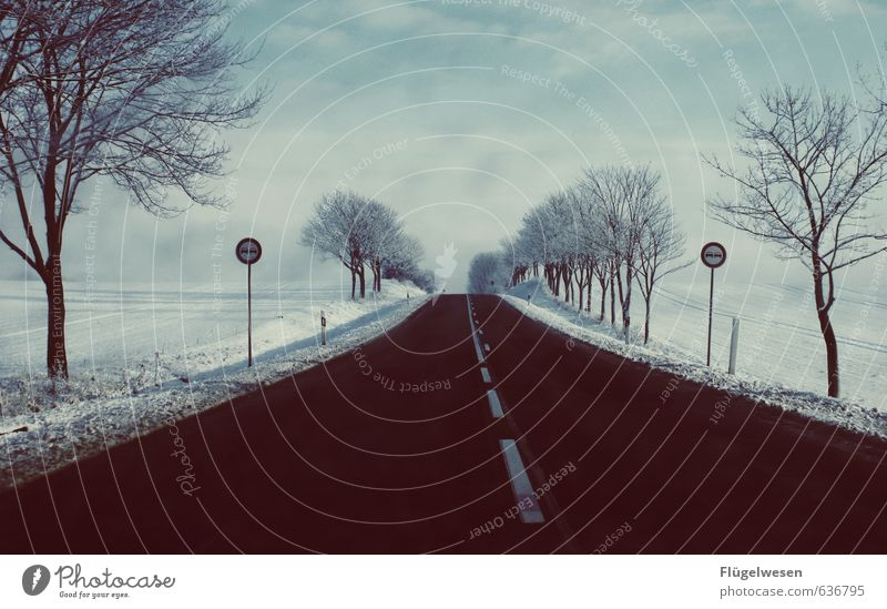 Nature Loneliness Winter Environment Street Snow Snowfall Ice Weather Fog Signs and labeling Wind Climate Frost Storm Gale