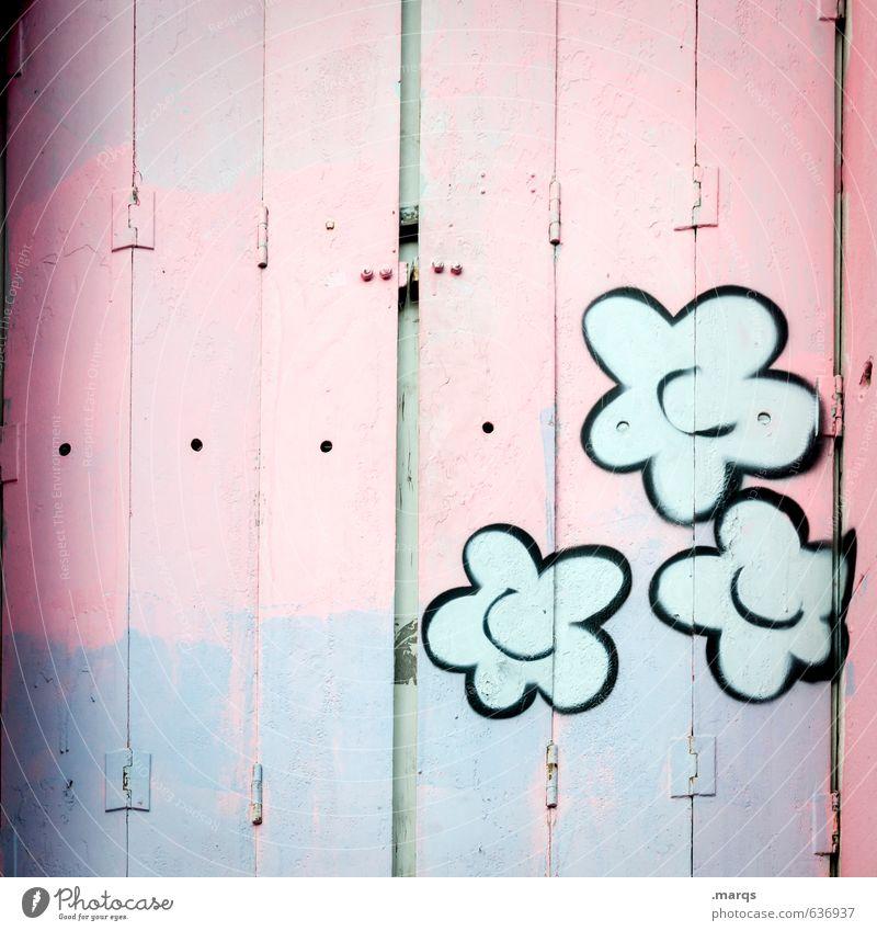closed Lifestyle Style Design Window Wood Graffiti Bright Hip & trendy Beautiful Violet Pink Colour Creativity Shutter Closed Flower Colour photo Exterior shot
