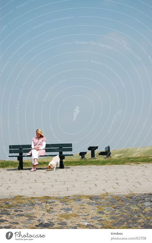 beach walk Dog Woman Green Seating Blonde Brunette Long Feminine Animal Meadow Ocean Beach Background picture Portrait format Going out Way out Elapse To enjoy