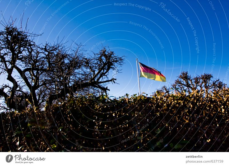 banner Architecture Berlin Garden Garden plot Garden allotments Schöneberg Town City life wallroth Flag Wind Blow Judder German Flag Nationalities and ethnicity