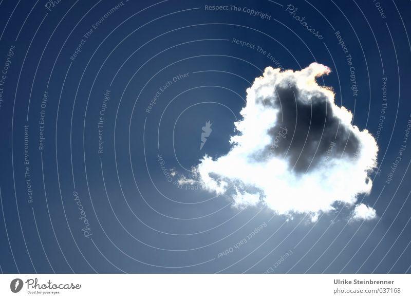 Sky Nature Blue White Sun Clouds Winter Far-off places Warmth Gray Above Natural Bright Air Glittering Illuminate