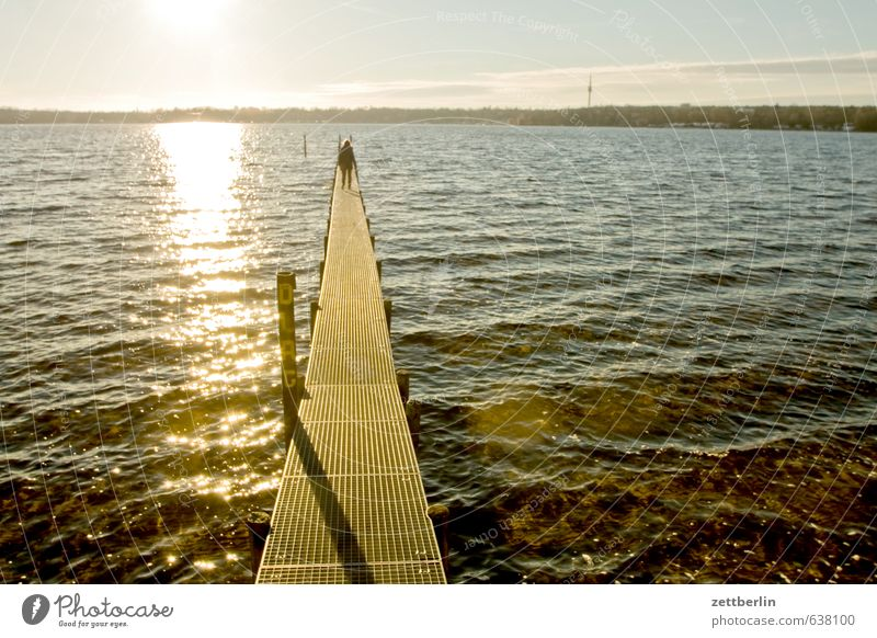 footbridge at Wannsee lake Lake Water Body of water Sun Back-light Coast Lakeside River bank Footbridge Jetty Flashy Dazzle Bright Light Sunlight Sunset Waves