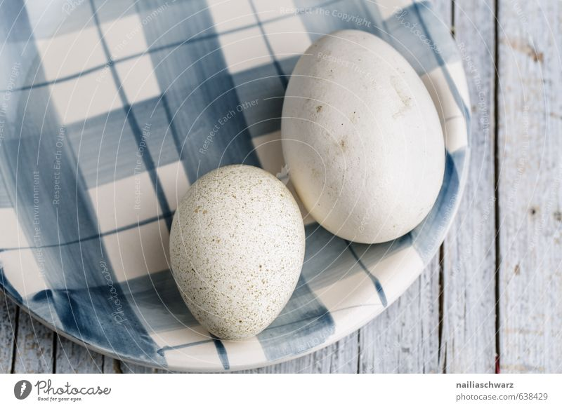 Goose and Duck Egg Food Nutrition Breakfast Organic produce Life Eating Feasts & Celebrations Easter Decoration Plate Wood Glass Line Lie Authentic Elegant
