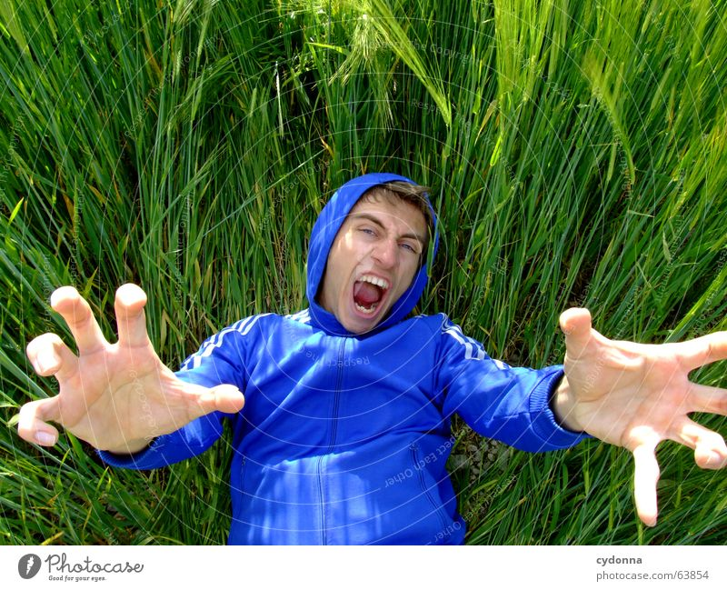 Human being Man Nature Blue Hand Green Summer Face Emotions Grass Funny Field Lie Crazy Grain Jacket