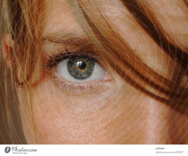 Woman Eyes Hair and hairstyles Freckles Pupil Looking