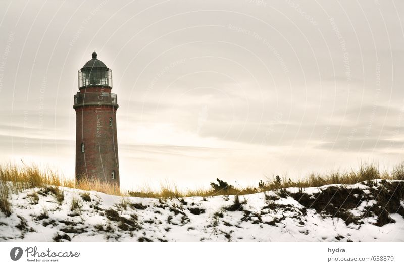 Lighthouse Darßer Ort Relaxation Vacation & Travel Landscape Sky Winter Beautiful weather Snow Grass Marram grass Coast Beach Baltic Sea Ocean Dune Sandy beach