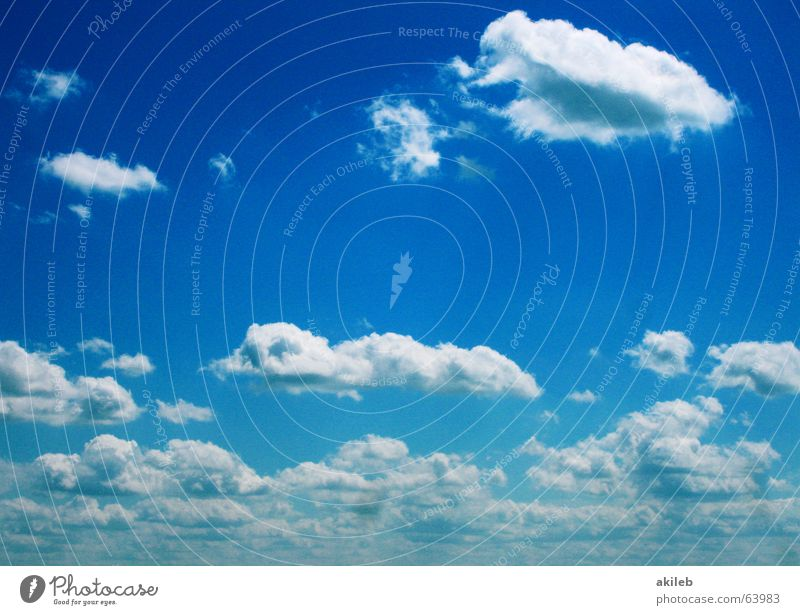 little cloud Clouds White Far-off places Heavenly Background picture Sky Blue Freedom Above