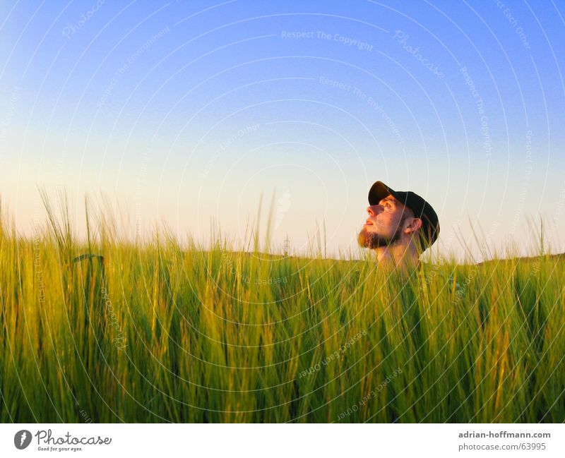 Man Sky Green Blue Summer Loneliness Meadow Spring Head Field Weather Longing Grain Facial hair Cap Guy