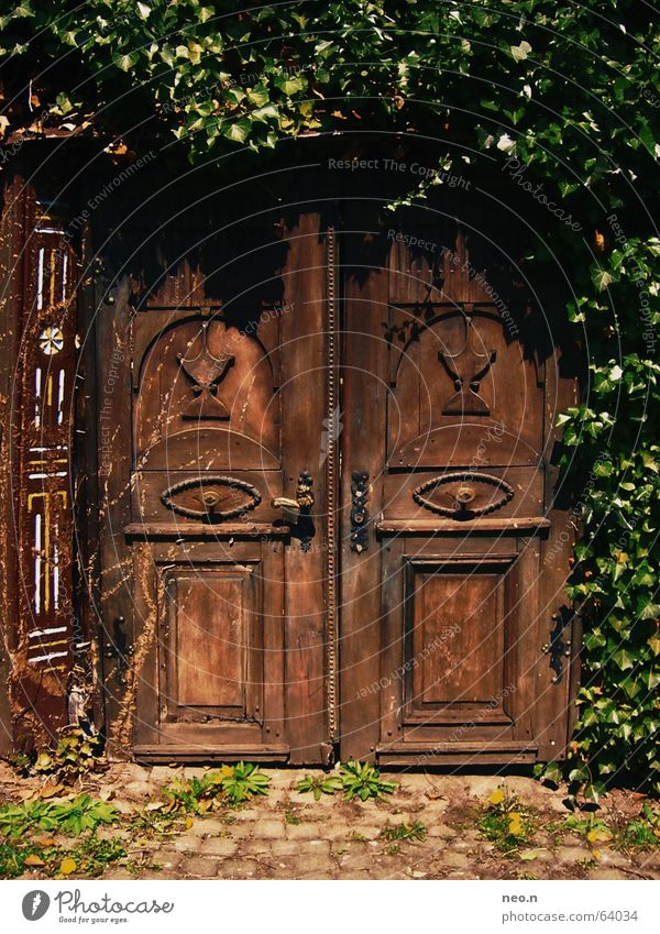 Secret door House (Residential Structure) Plant Ivy Castle Ruin Architecture Door Wood Key Old Dark Historic Brown Green Mysterious Carving Mystic Portal