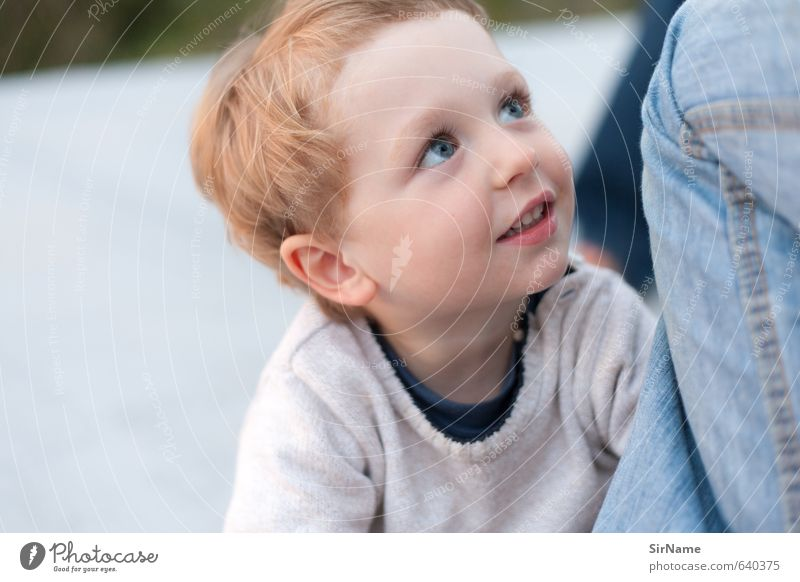 258 [oblivious] Child Boy (child) Family & Relations Infancy Life 1 Human being 3 - 8 years Sweater Red-haired Observe Touch Discover Communicate Smiling