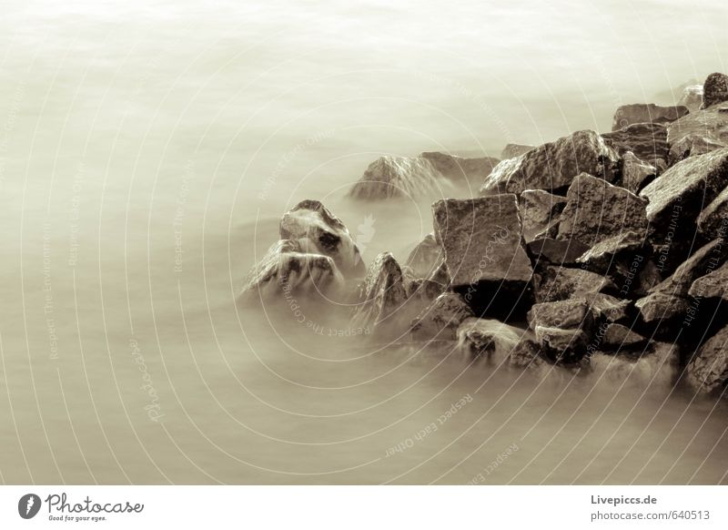 ...on rebuke Environment Nature Landscape Water Rock Waves Coast Beach Bay Baltic Sea Stone Brown Serene Patient Black & white photo Subdued colour