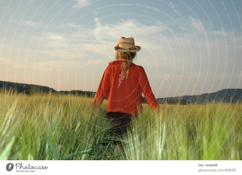 Woman Summer Field Adults Future Vantage point Grain Hat Farmer Harvest Agriculture Cornfield Phenomenon Sentimental Straw hat