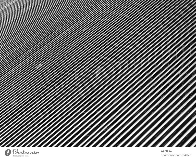 monochrome lines diagonal graphic Stripe Diagonal Abstract Graphic Electrical equipment Technology Industry Line Black & white photo Structures and shapes