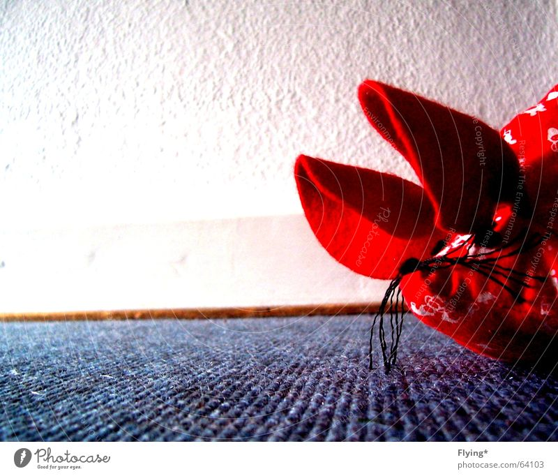 White Blue Red Wall (building) Floor covering Ear Mouse Border Exclamation Hmmm