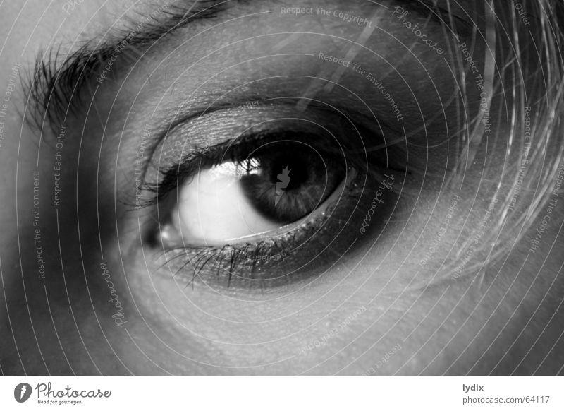 Eyes Hair and hairstyles Blonde Skin Nose Observe Contact Wrinkles Make-up Eyelash Eyebrow Apply make-up Mascara Looking Ice axe Eyeliner