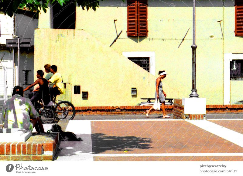 street scene Summer South Italy Town Serene Lunch hour Bicycle Dog Woman Man Siesta Midday Group Joy Street Human being Youth (Young adults) Mixture