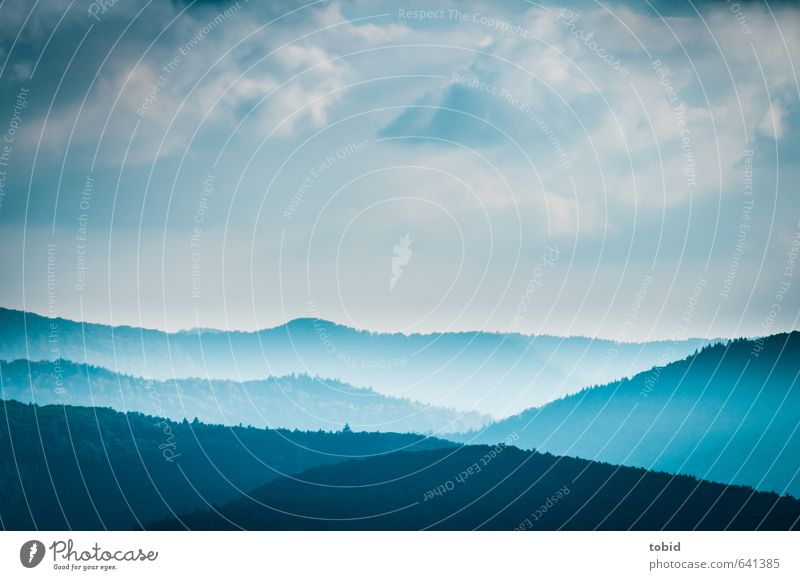 Sky Nature Blue Plant Tree Landscape Clouds Far-off places Black Forest Mountain Autumn Freedom Natural Horizon Air
