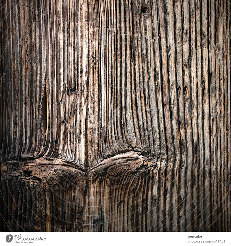 Suspicious Nature Wood Sign Aggression Senior citizen Nostalgia Mistrust Face Eyes Narrowed Looking Thought Rustic wooden eye Knothole Wooden board Quaint