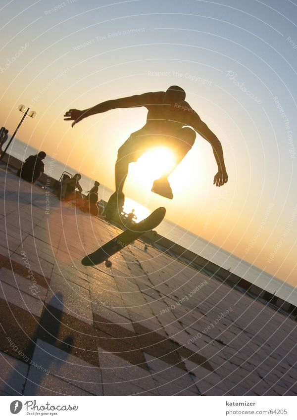 Man Sun Sports Action Skateboarding Dynamics
