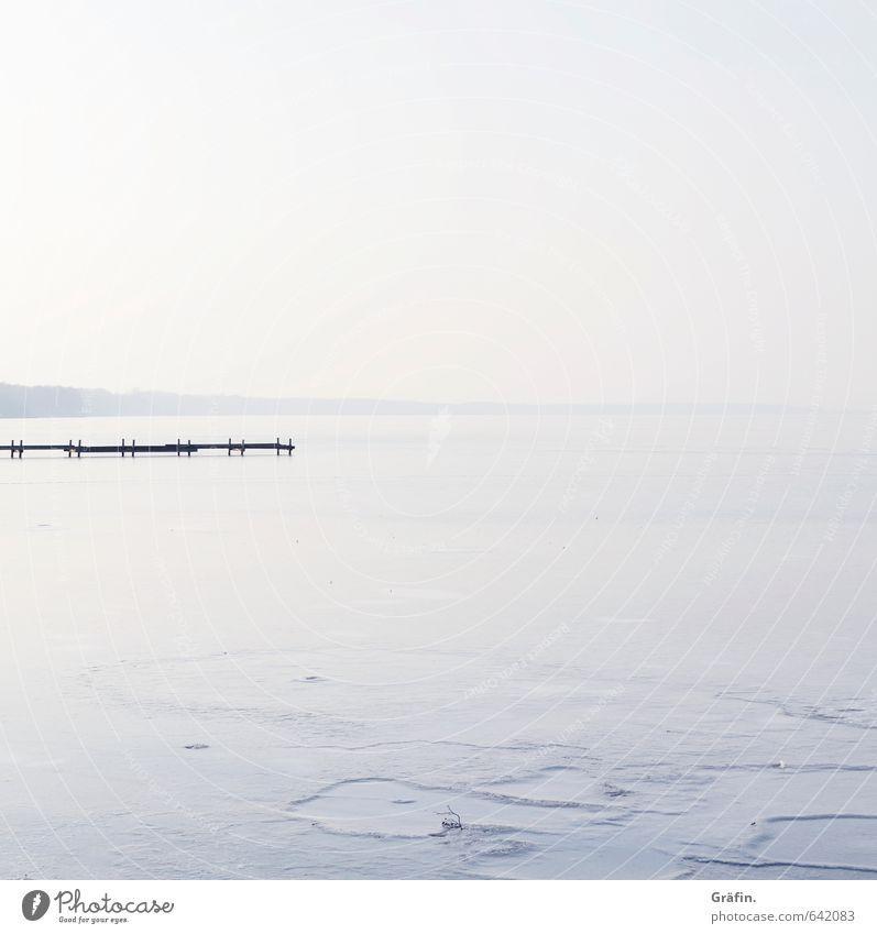 Blue White Water Loneliness Landscape Calm Winter Environment Lake Horizon Ice Idyll Beautiful weather Frost Infinity Lakeside