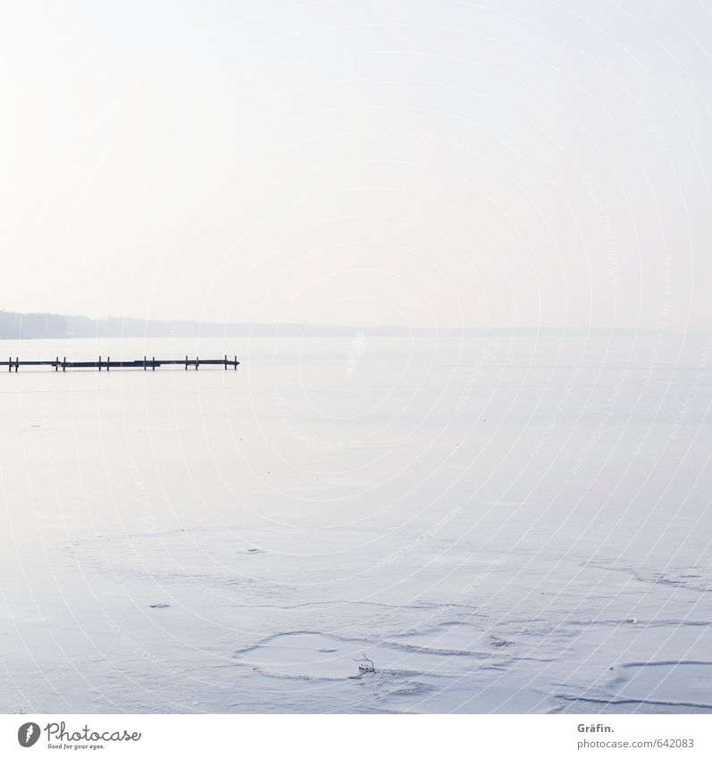 Blue White Water Loneliness Landscape Calm Winter Environment Lake Horizon Ice Idyll Beautiful weather Frost Infinity Lakeside