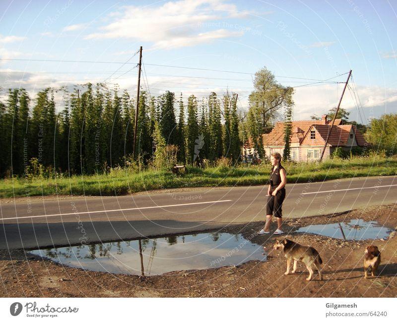 Woman Street Landscape Hop