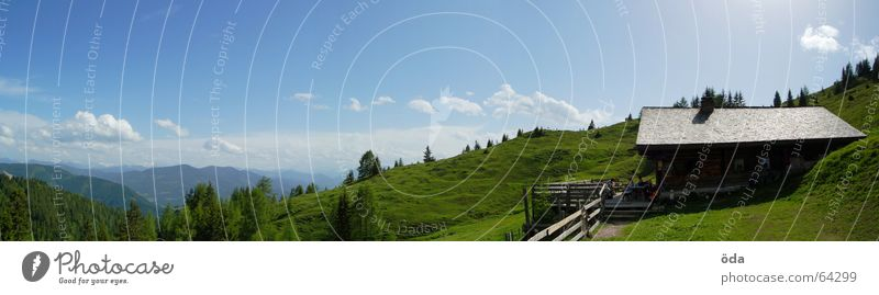 Tree Green Forest Meadow Mountain Freedom Large Vantage point Hut Panorama (Format) Alpine pasture Plant House (Residential Structure) Peak cross