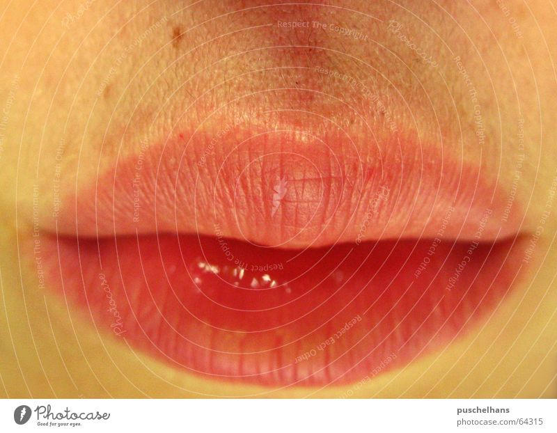 Human being Colour Cold Warmth Sadness Dream Fear Mouth Closed Skin Grief Lips Physics Near Kissing Part