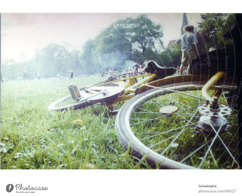 fog-wadden bicycle Bicycle Meadow Fog Park Green Leipzig Calm Contentment Exterior shot Freedom Sadness