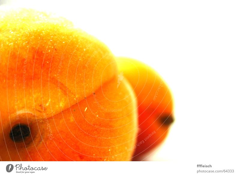 Yellow Orange Background picture Fruit Hind quarters Foreground Apricot