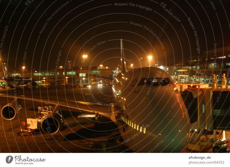 Vacation & Travel Dark Airplane Night Wing Airport Wanderlust Floodlight International Engines Consign