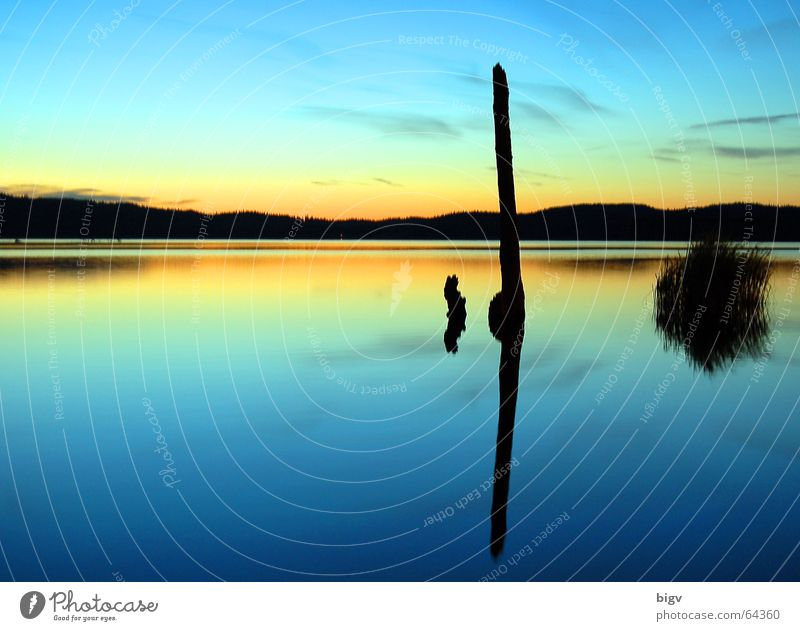 evening mood Beautiful Calm Sun Landscape Water Sky Lake Dream Blue Orange End Peace Stick Summer solstice Sunset Background picture