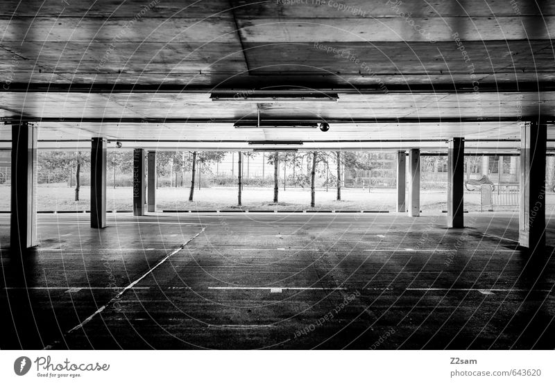 TG SW Tree Deserted Parking garage Manmade structures Building Architecture Dark Simple Modern Clean Gloomy Town Loneliness Center point Arrangement Perspective
