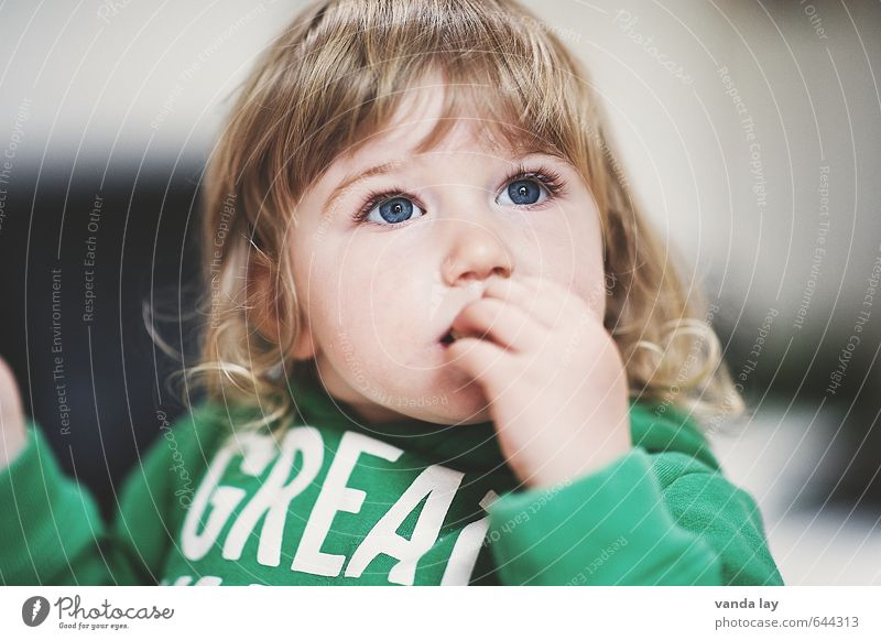 GRAT Human being Child Toddler Girl Infancy Face 1 1 - 3 years Sweater Green Blonde Curl great Colour photo Interior shot Copy Space left Copy Space right