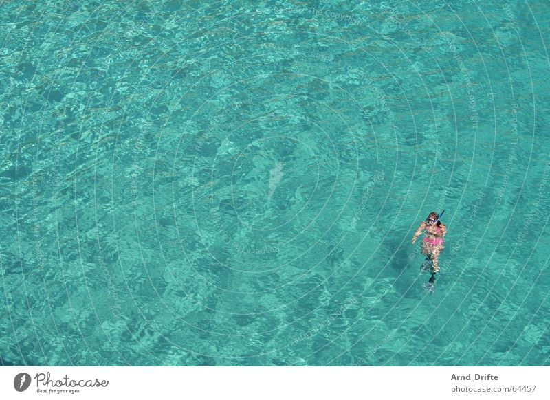 Woman Human being Water Ocean Blue Summer Vacation & Travel Loneliness Far-off places Relaxation Freedom Waves Pink Dive Swimming & Bathing Turquoise