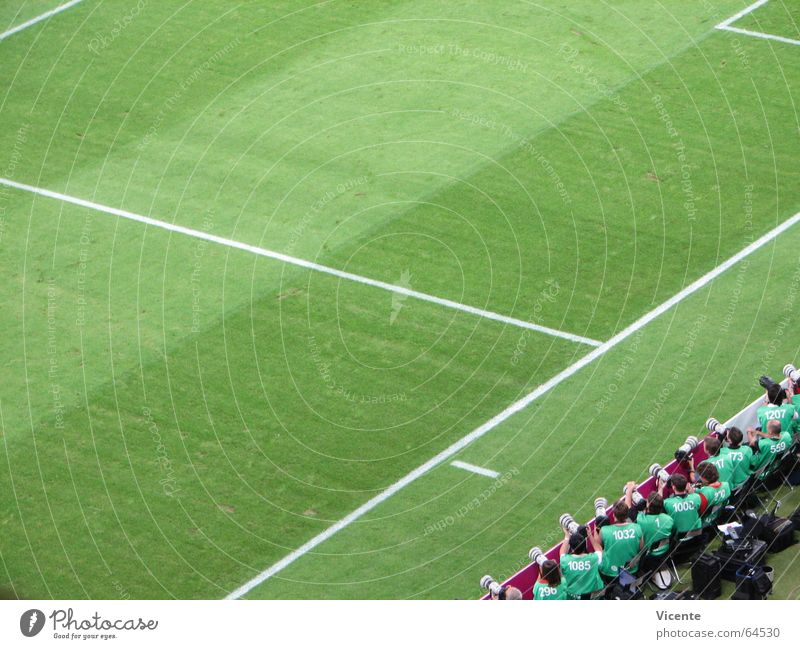 Green Sports Line Soccer Sports team Lawn Grass surface Stripe Border Playing field Stadium Section of image Soccer player Football pitch Soccer team