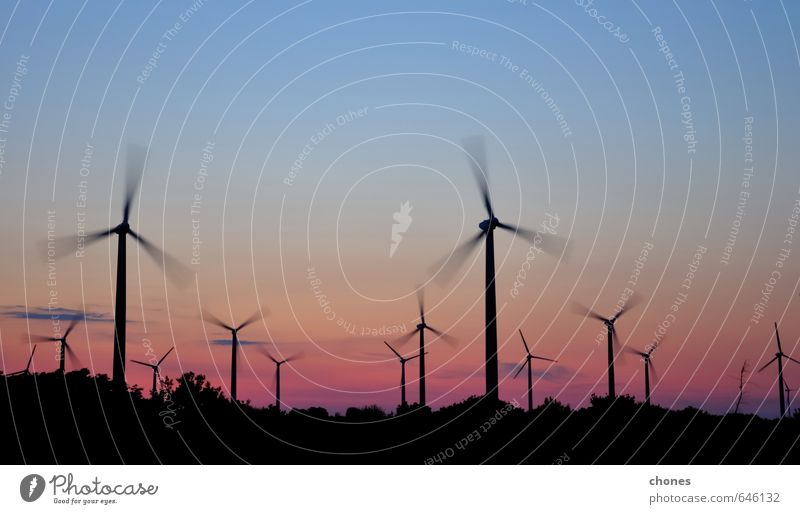 Wind turbine farm with rays of light at sunset Sky Plant Sun Landscape Environment Group Wind Modern Energy Technology Clean Farm Generation Dusk Dramatic Electric