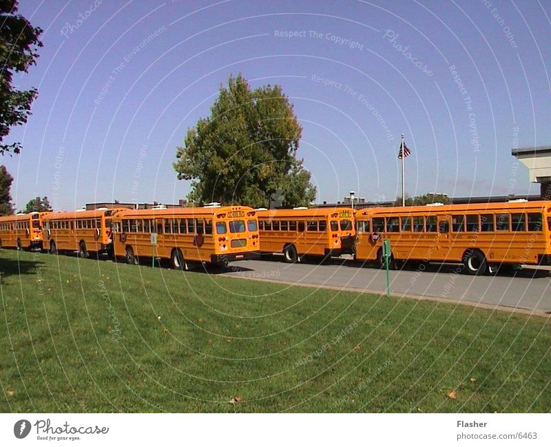 school buses School bus Americas