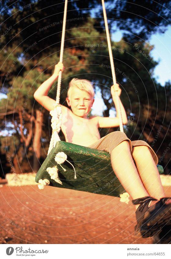 endorphins Swing Child Summer Fresh Tree Vacation & Travel Wooden board Playing Joie de vivre (Vitality) Live Evening sun Joy Boy (child) boy Wind Skin Sun