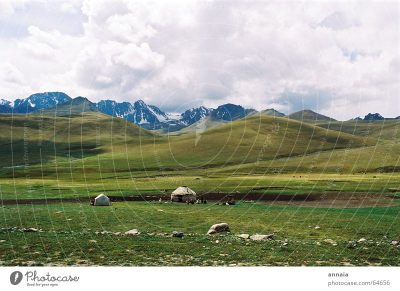 Sky Clouds Far-off places Landscape Life Meadow Mountain Freedom Air Contentment Clarity Simple Asia Serene Sheep Steppe