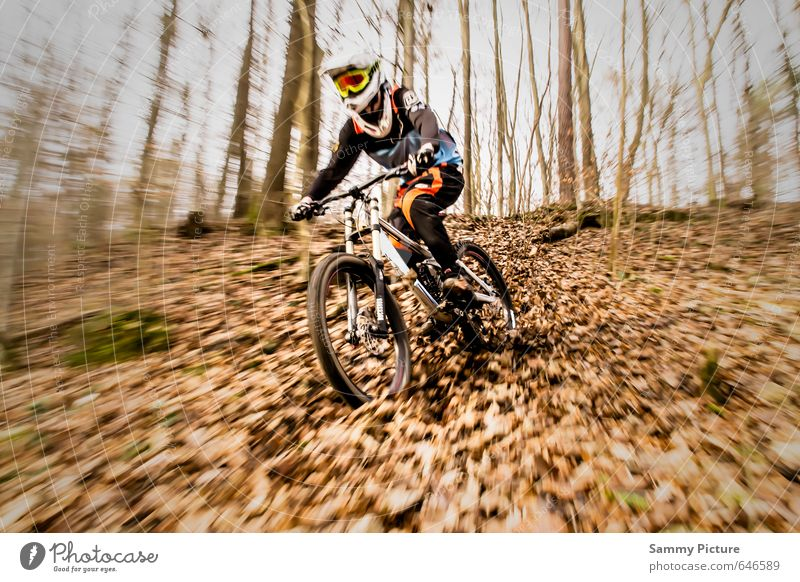 downhill Sports Cycling Bicycle Human being Masculine Young man Youth (Young adults) 1 Driving Athletic Joie de vivre (Vitality) Cool (slang) Joy Mountain bike