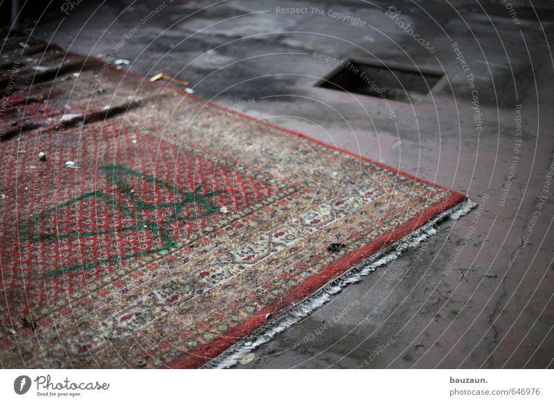 cemetery of flying carpets. Redecorate Moving (to change residence) Arrange Carpet House (Residential Structure) Industrial plant Factory Ruin Rug fringe