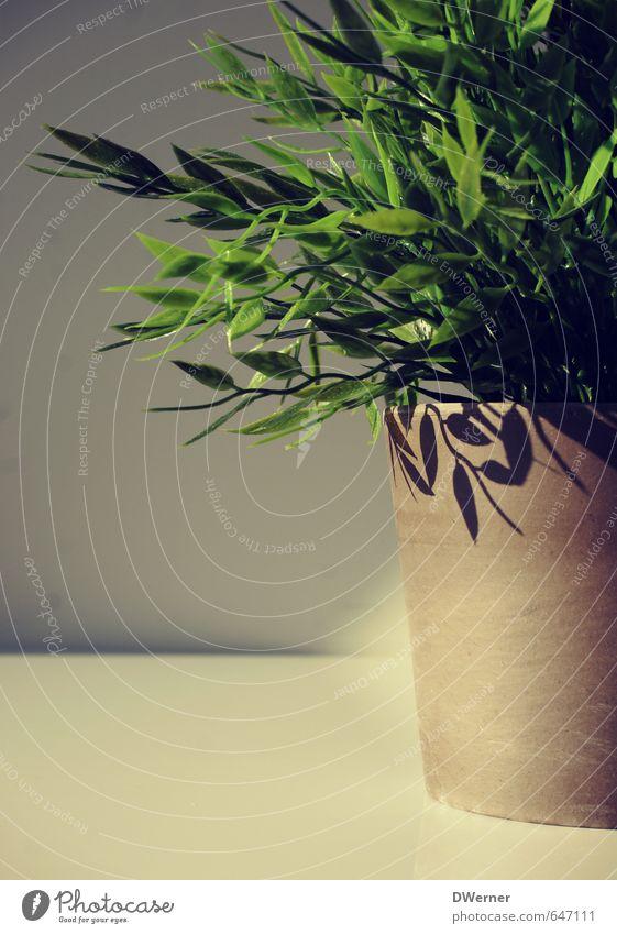 of course artificial... Calm Living or residing Arrange Interior design Decoration Art Work of art Environment Nature Plant Flower Grass Bushes Hemp
