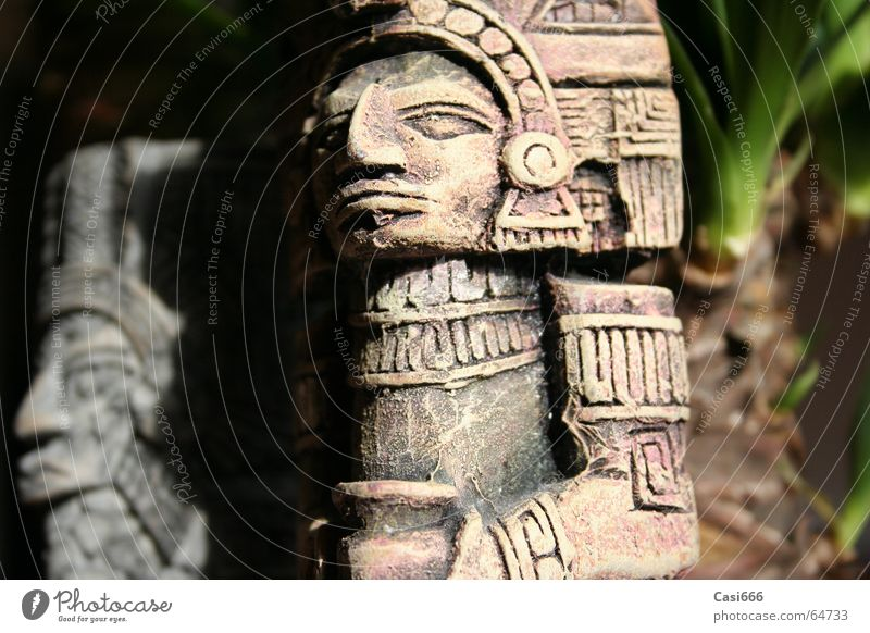 Tomb Raider: The return Statue Virgin forest Inca Maya Excavation Archeology Culture Go under Forget Doomed Art Indiana tomb raider lara croft Jones Mexico