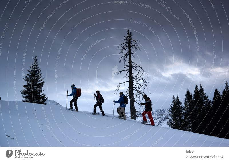 evening snow shoe hike Tourism Adventure Freedom Winter Snow Winter vacation Mountain Hiking Sports Fitness Sports Training Winter sports 4 Human being Nature