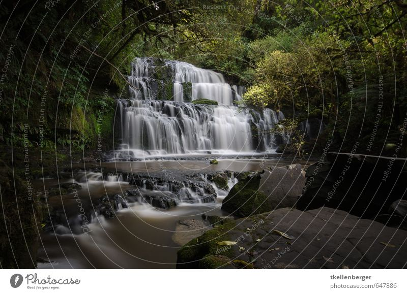 Purakanui Falls New Zealand I Nature Water Waterfall purakanui if Vacation & Travel catlins South Island The Catlins Tourism Long exposure Flow Virgin forest